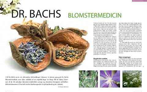 Blomstermedicin – Tema: Dr. Bachs blomstermedicin