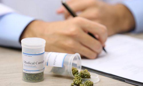 Medicinsk cannabis skaber ikke flere unge hashrygere