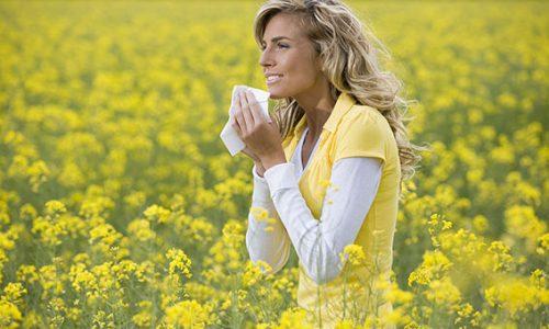Find vej ud af allergi
